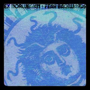 Fear Backwards cover