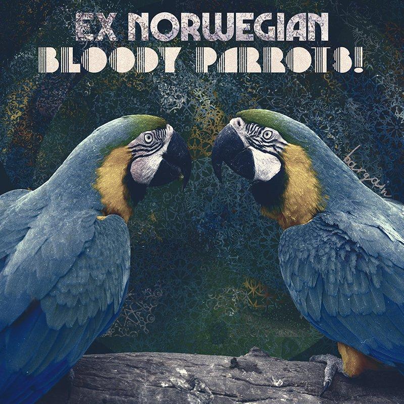 Bloody Parrots!